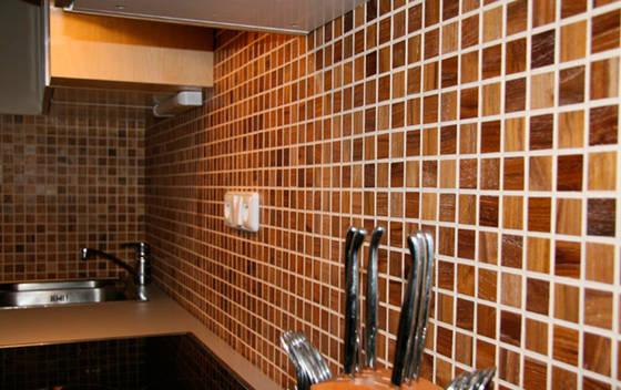 Пластиковая панель на кухонном фартуке