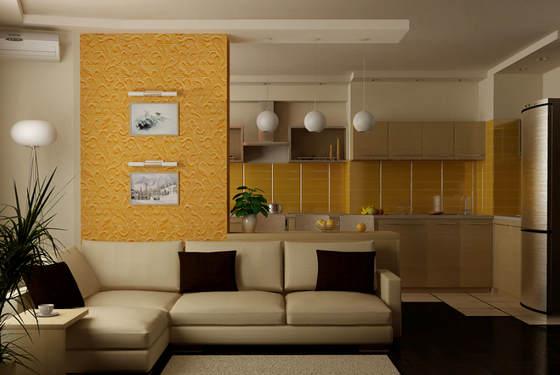 Кухня совмещённая с гостиной